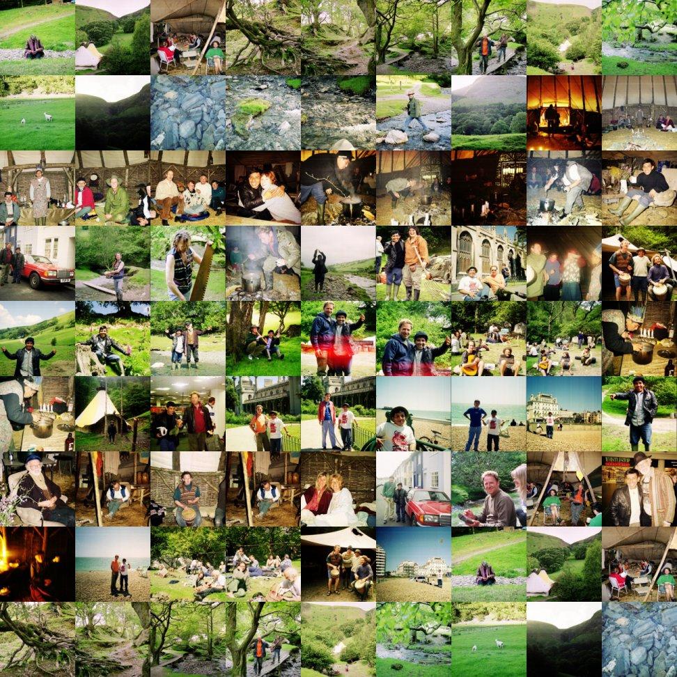 amazon rainforest plants collage. ayahuasca camp video wales uk 2002 with amazonian shaman javier arevalo amazon rainforest plants collage r