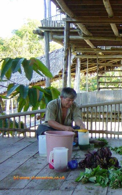 Plant Spirit Shamanism: Ayahuasca Medicine and Yoga Retreat