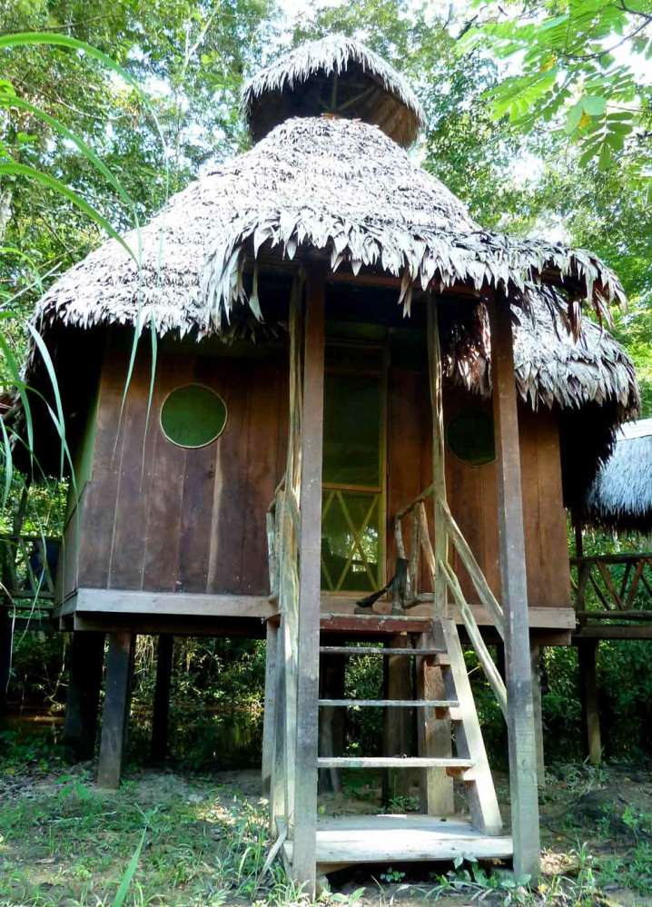 Ayahuasca & Visionary Art Workshop in the Amazon (3/3)