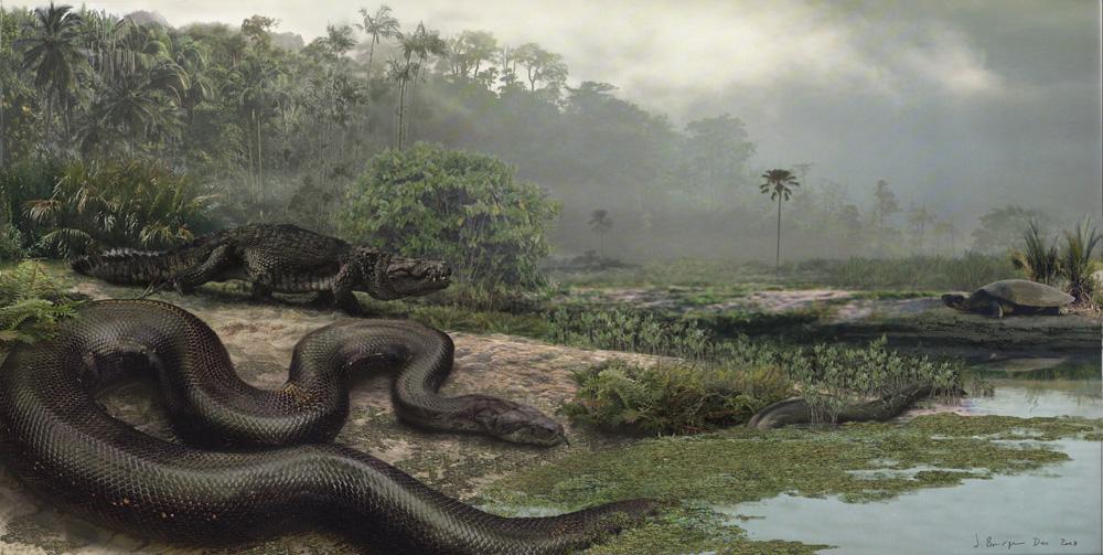 Is the Titanoboa the legendary Sachamama of Amazonian Mythology? (6/6)